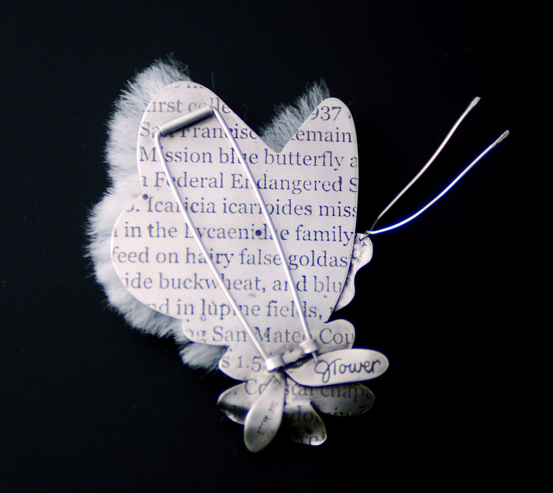 Mission Blue Butterfly - rear view