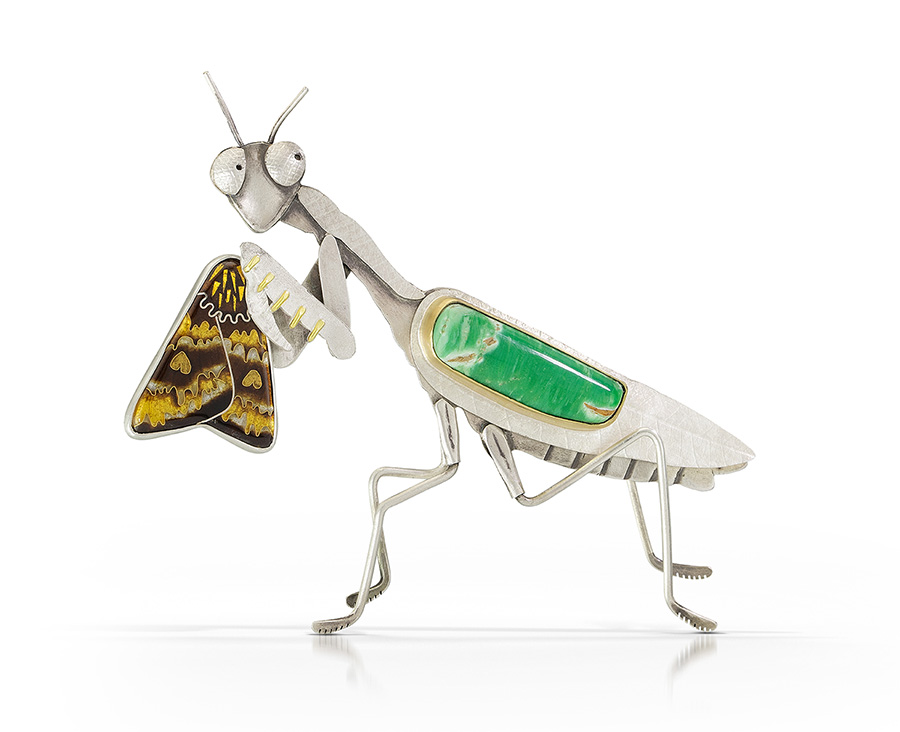 Praying Mantis Captures Moth